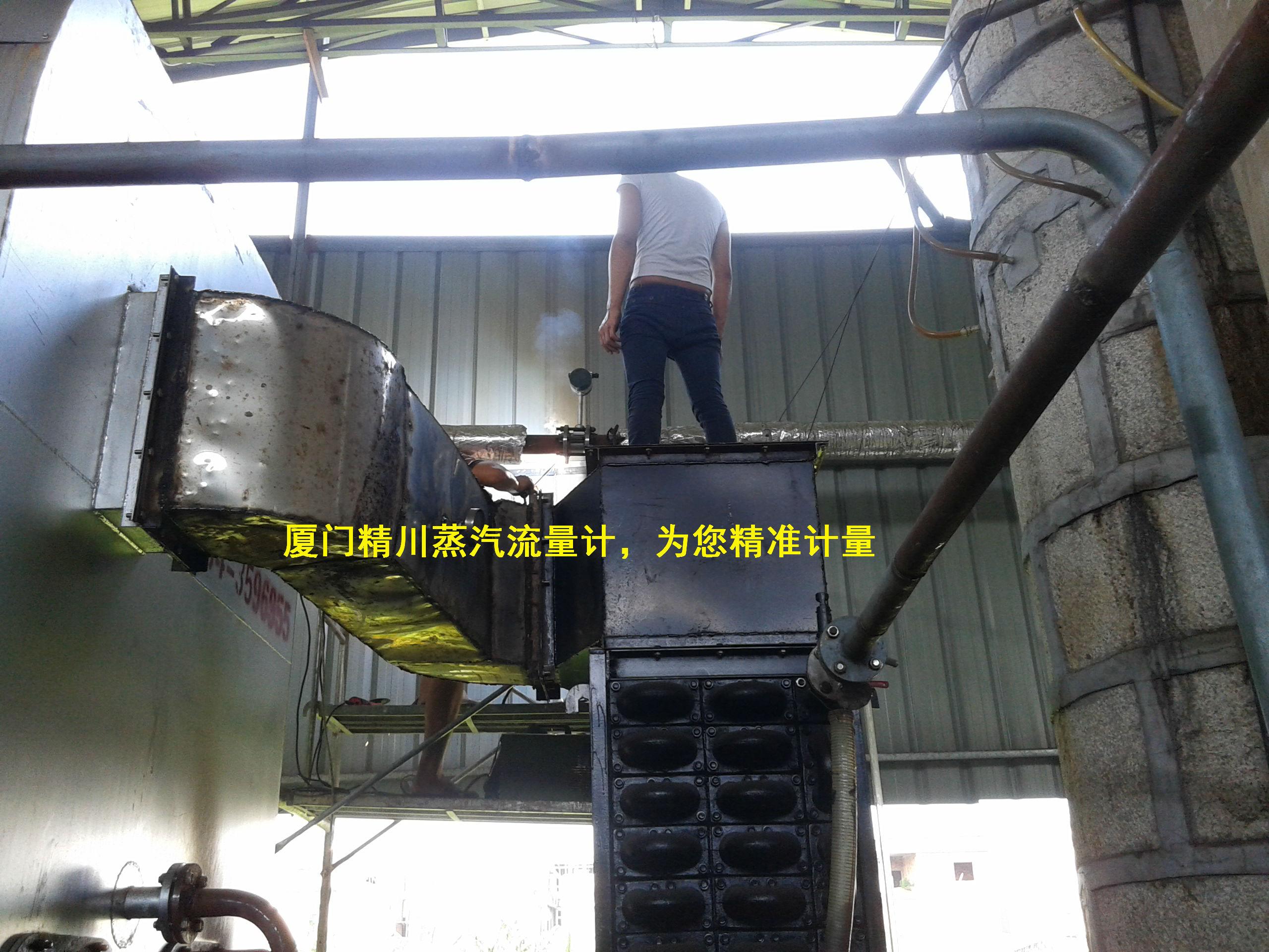 食品厂饱和蒸汽流量计
