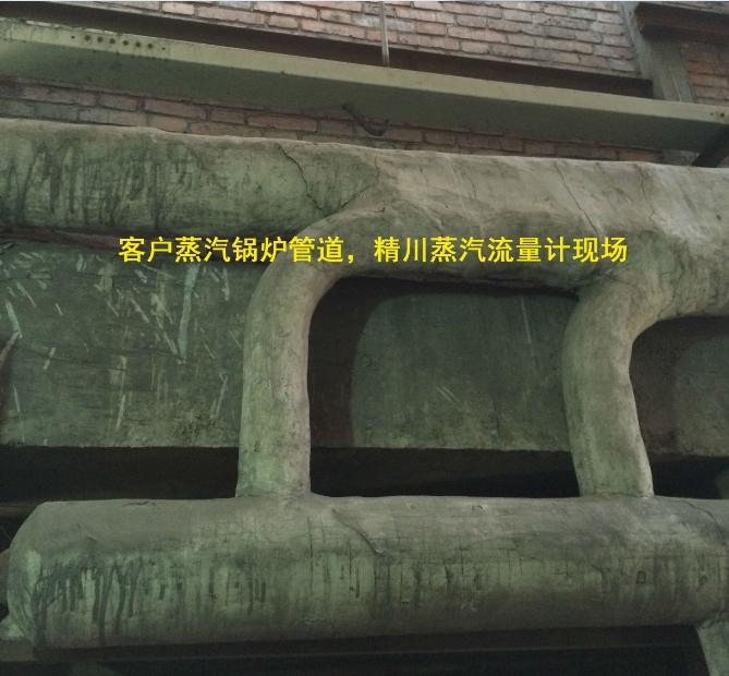 高温锅炉蒸汽流量计