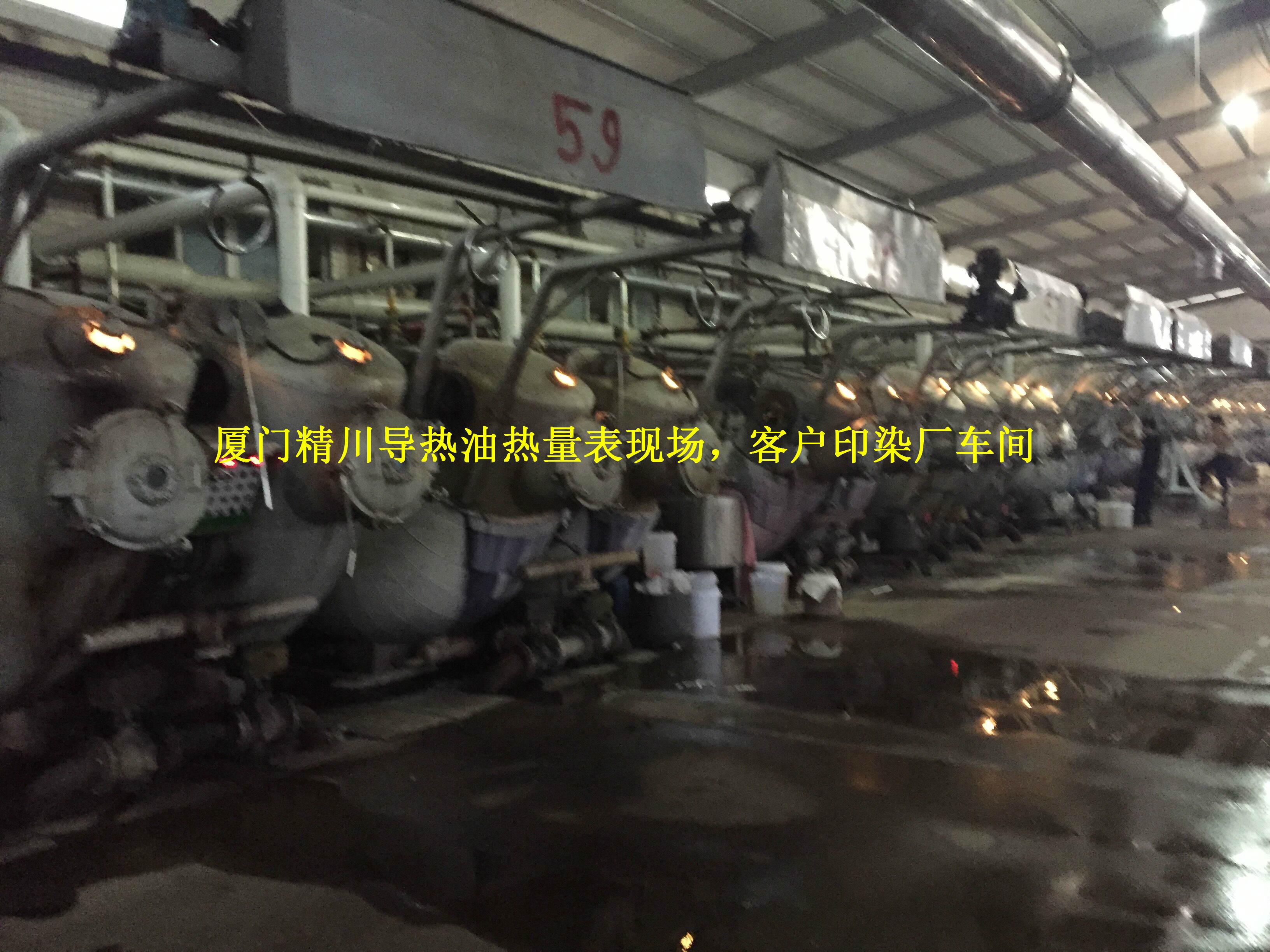 福建印染厂导热油热量表