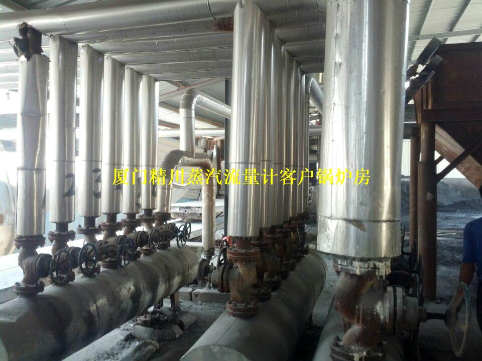制革厂锅炉蒸汽流量计