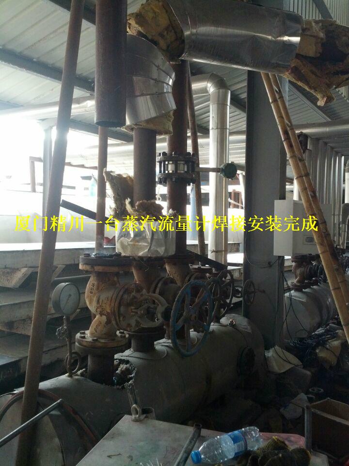 皮革厂锅炉蒸汽流量计