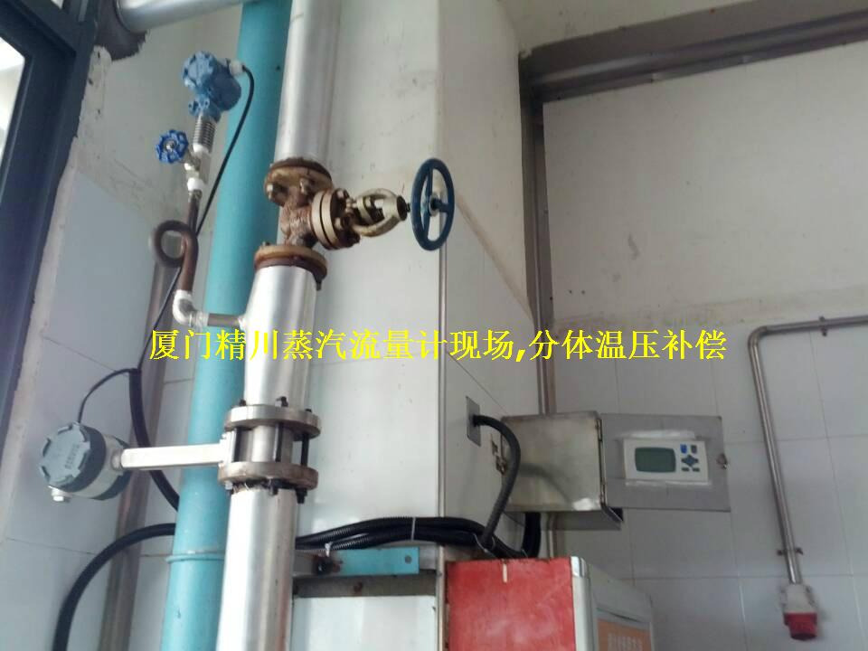 猪肉储备厂专用蒸汽流量计