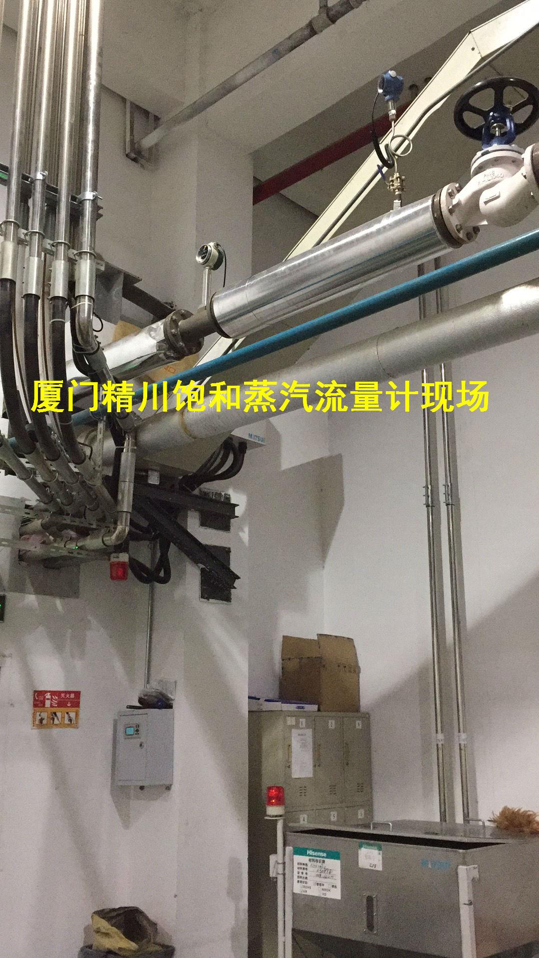 制革厂蒸汽流量计