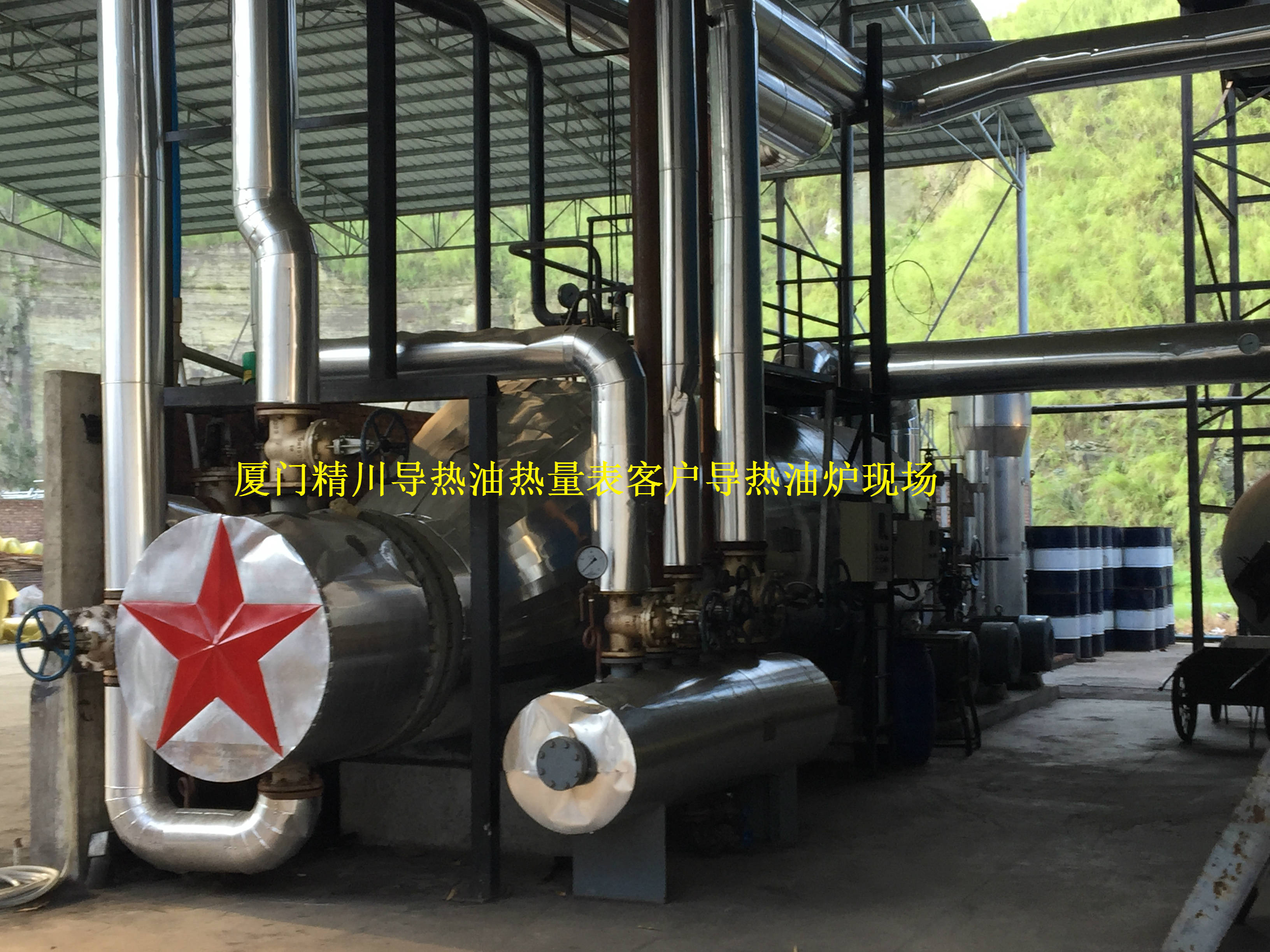 有机热载体导热油锅炉