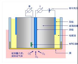 厦门精川极谱型溶解氧在线分析仪