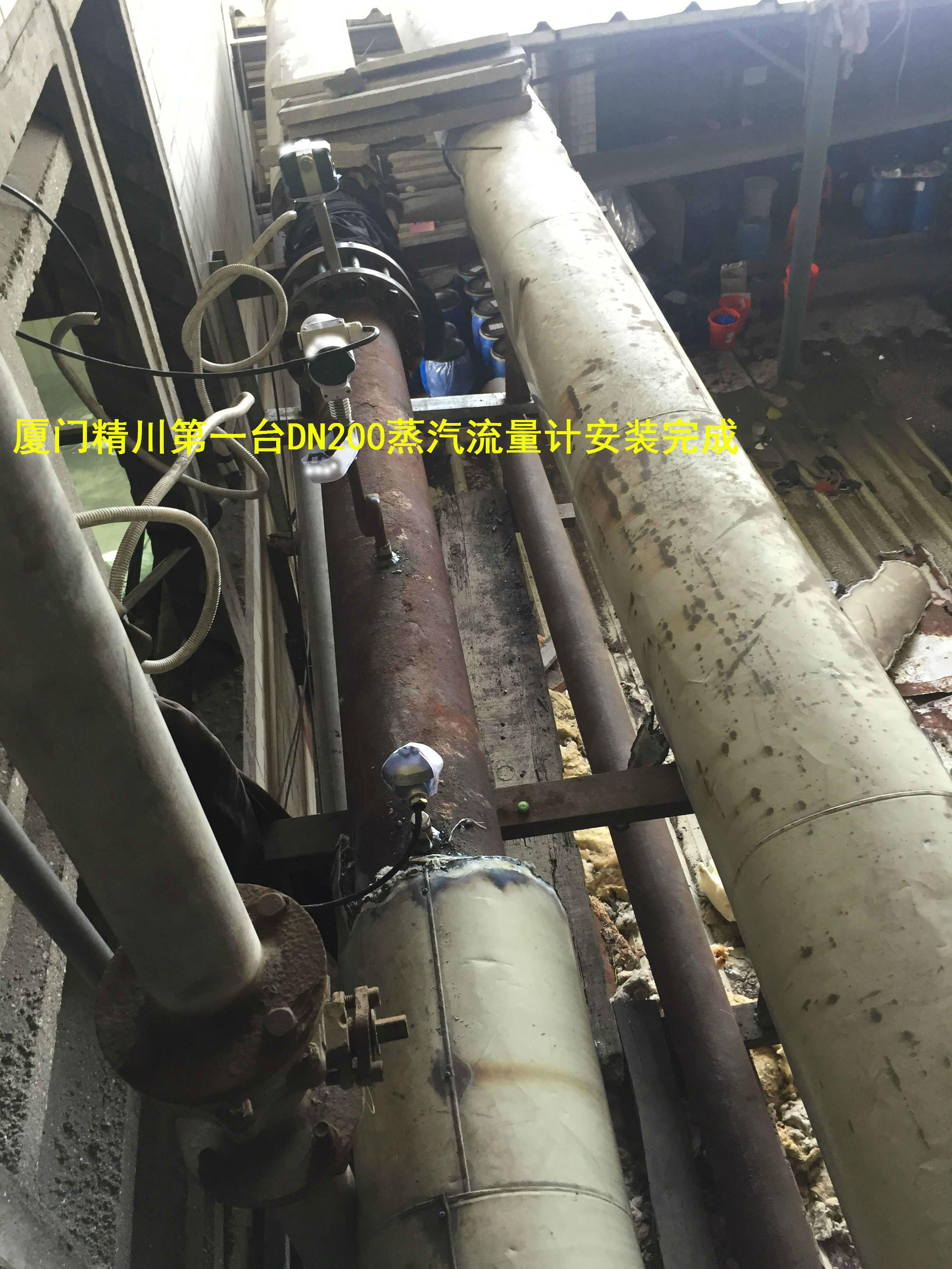 廈門精川印染廠蒸汽流量計