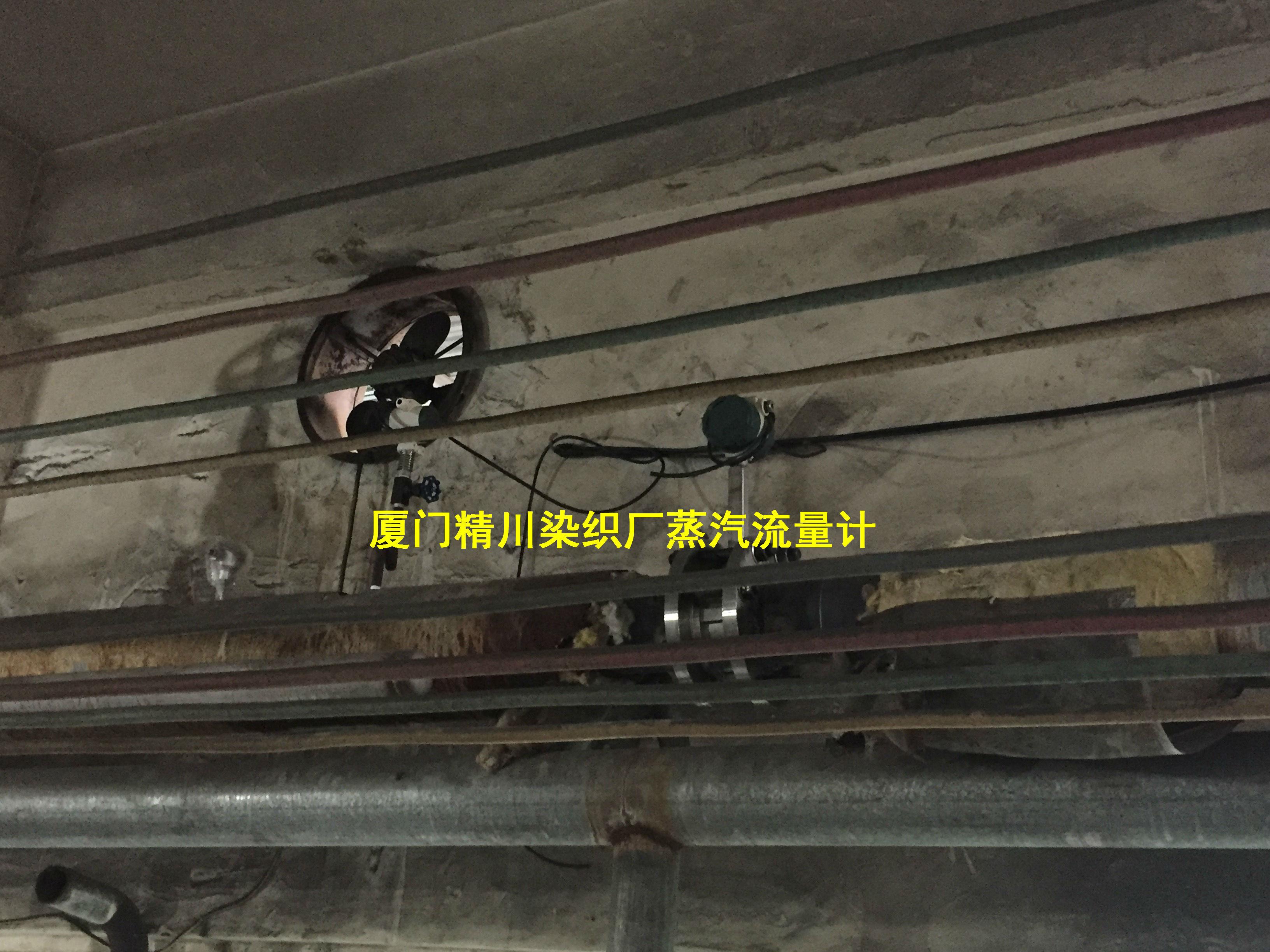厦门精川印染厂蒸汽流量计